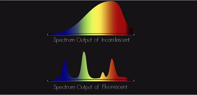 fluorescencia vs normal light radiation