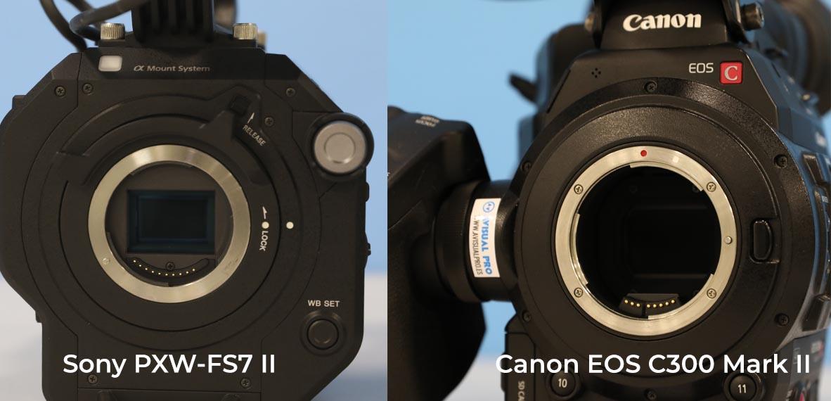 Canon EOS C300 Mark II vs Sony FS7 Mark II